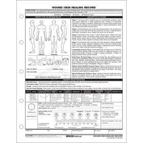 Wound/Skin Healing Record 3169HH