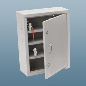 Narcotic Cabinet, 2 Locks, 1 Door