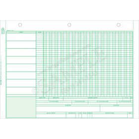 Add-On Health Systems Treatment Record Form