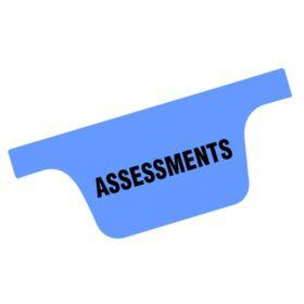 Chart Divider Tab - Assessments - Tyvek - Side