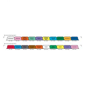 Chart Divider Set - Paper - Long-Term Care - 20 Tabs Side