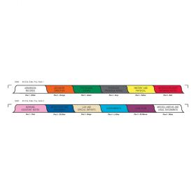 Chart Divider Set - Poly - Long-Term Care - 12 Tabs Side