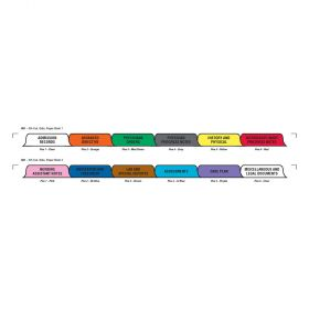 Chart Divider Set - Paper - Long-Term Care - 12 Tabs Side