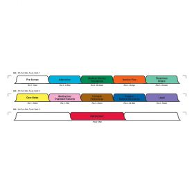 Chart Divider Set - Tyvek - Assisted Living - 11 Tabs Side