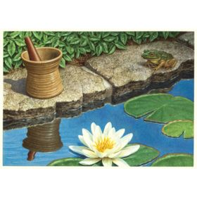 Frog Pond Print Only